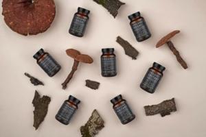 medicinal mushroom products marketing